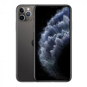 iPhone 11 Pro Max SIN FACE ID Gris Sideral 64Go Reacondicionado
