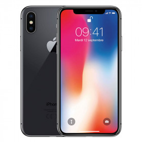 iPhone X Gris Espacial 64Go Reacondicionado